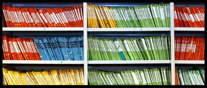 Tips For Organizing Image Files - Backfrog
